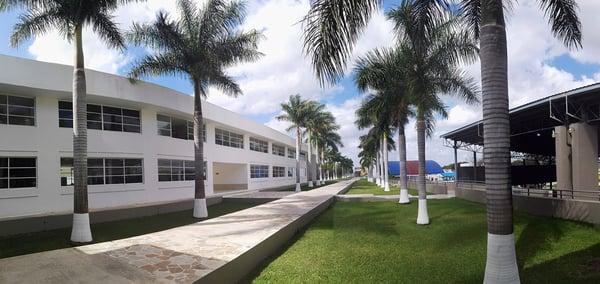 Cuando la búsqueda de colegio en Mérida se vuelve una ¡GRAN EXPERIENCIA!