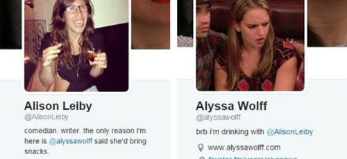 Alison Leiby and Alyssa Wolff - Twitter Bios