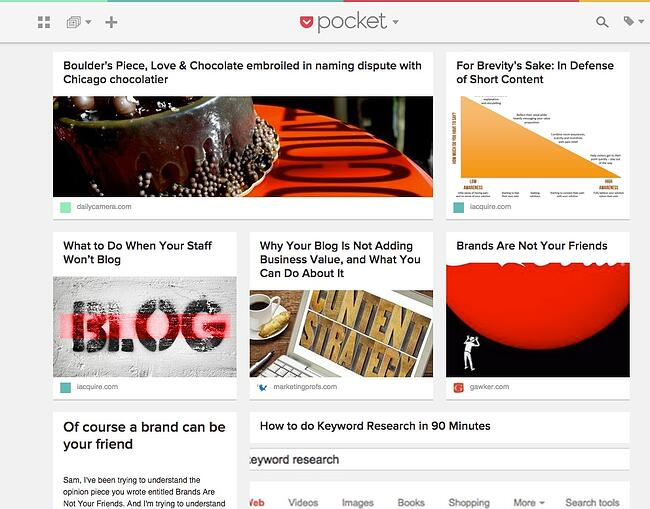 Pocket-blogmutt