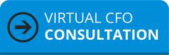 Virtual CFO Consultation