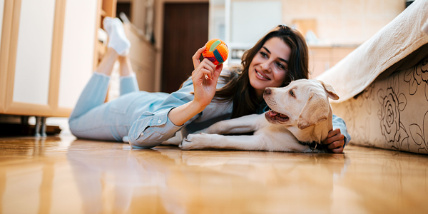 Top tips for indoor winter fun with your dog