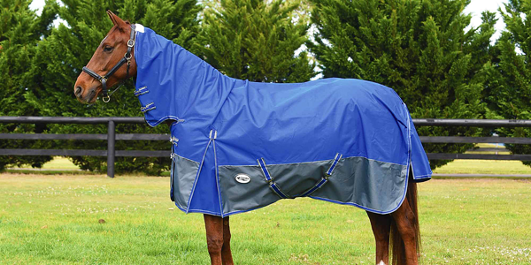 How to fit a horse rug with belly surcingles