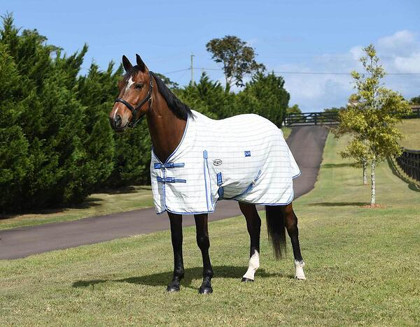 3 easy steps to finding the right size Caribu rug for your horse