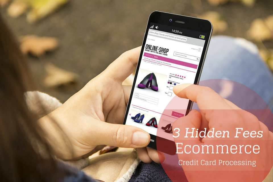Understanding hidden fees ecommerce credit card processing an online shopping cart for credit card processing is the payment gateway for your business products online when your customer goes to purchase items on colourmoves