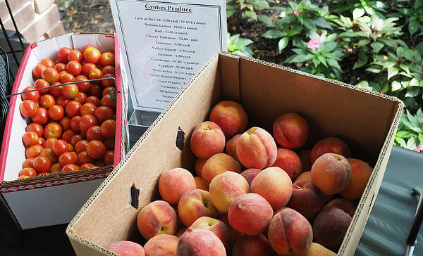 Farmers Markets and Other Fresh News