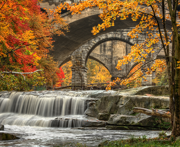 Your 2019 Ohio Fall Foliage Guide