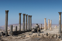 l In northern Jordan, a community-based tourism project wakes the sleepy village of Umm Qais