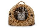 Successful communication of strategic change needs more than just one neurone(or letting the cat out of thebag)