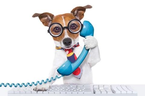 Haustiere statt Nutzvieh – Wie HR-Manager im New-Work-Zeitalter denken müssen