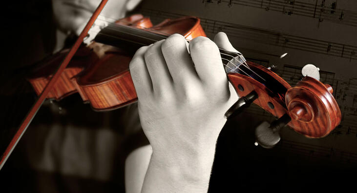 E-strings-violin.jpg