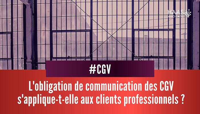 CGV et clients profesionnels
