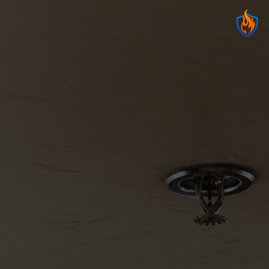 What Businesses Need to Know About Fire Sprinklers