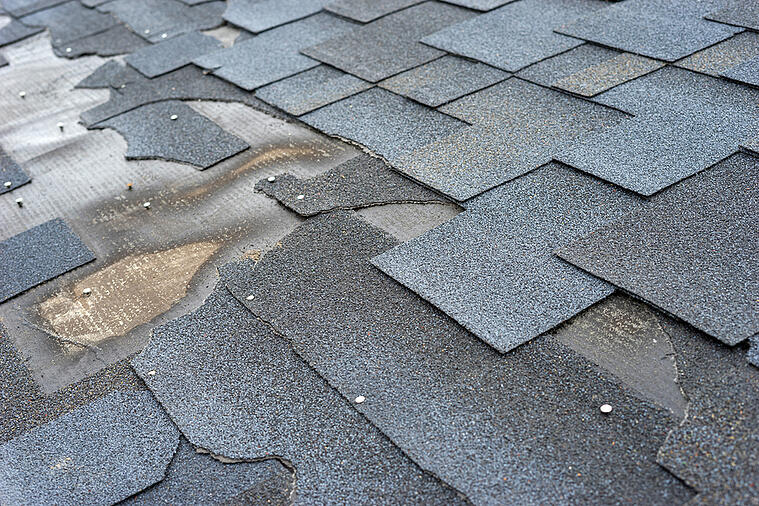 Avoid a Roof Replacement by Having Your Roof Inspected for These Issues