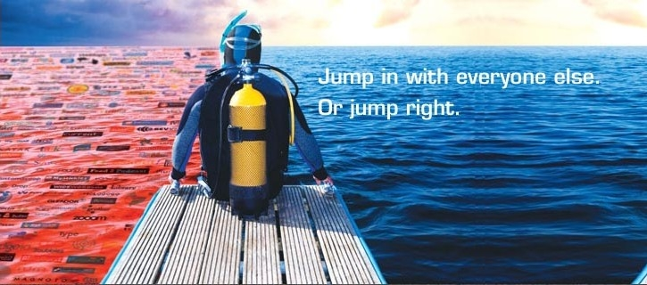 The Blue Ocean Strategy Diver