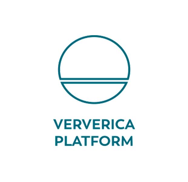Ververica Platform - icon