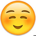 smiley_face_emoji.png