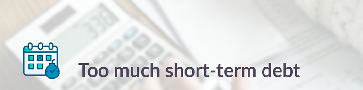short term debt
