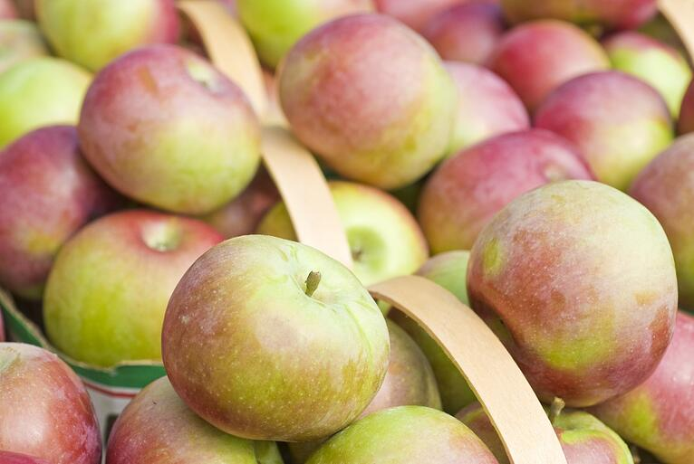 bigstock-Fresh-Macintosh-Apples-in-a-Ma-9185114-1344x900