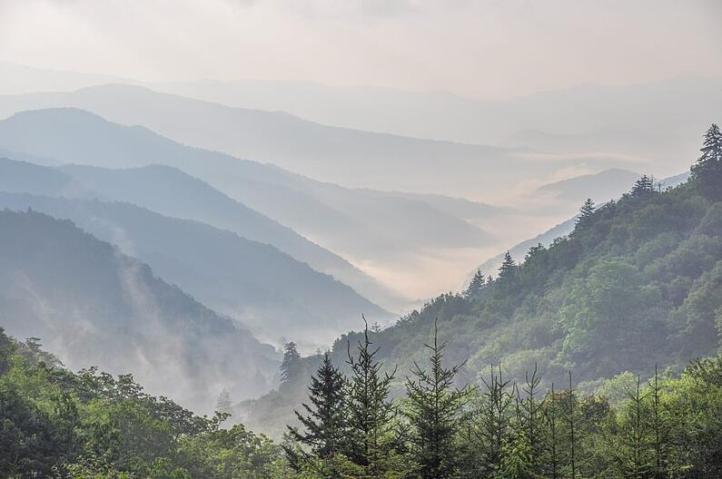 Tennessee - 2019 Market Overview