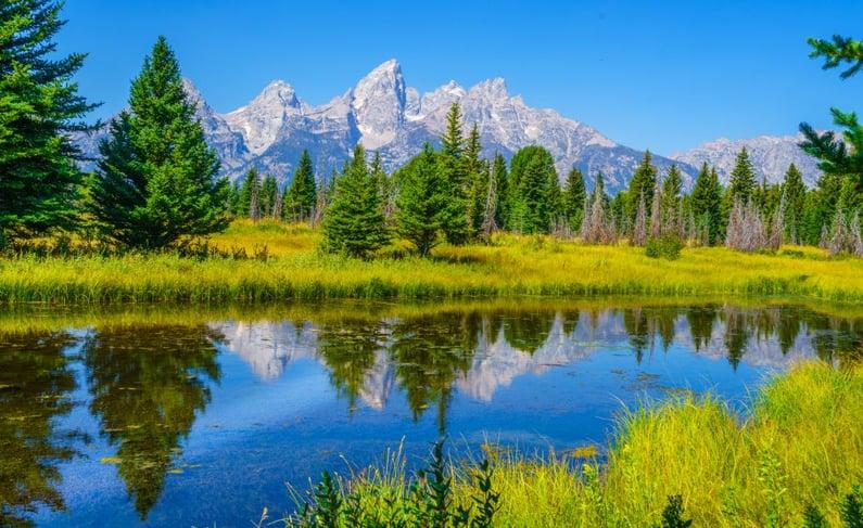 Northwest Wyoming - 2019 Market Overview