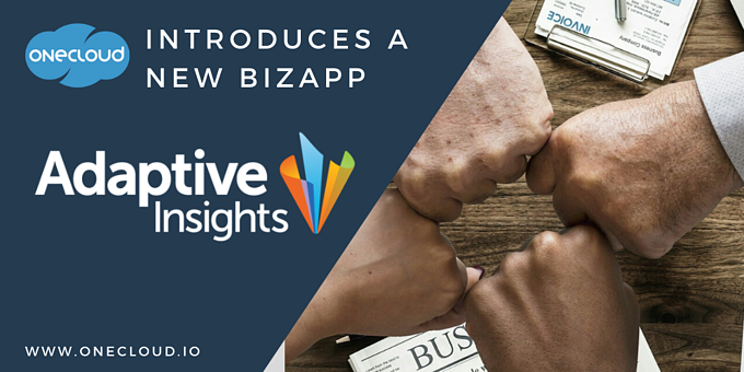 Introducing the Adaptive Insights BizApp
