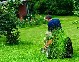 mulch your lawn clippings
