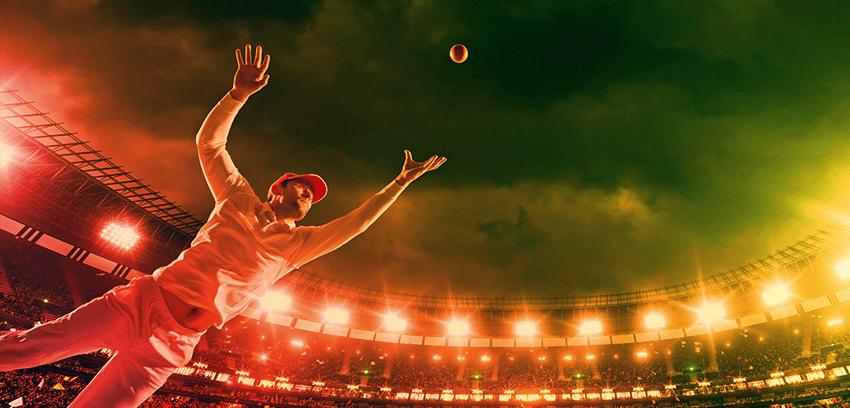 Cricket_Blog copy-1