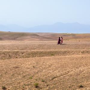 Firepot_-_Morocco-153_square_411cf348-abe7-4361-8e52-bfd766c7ce12_300x