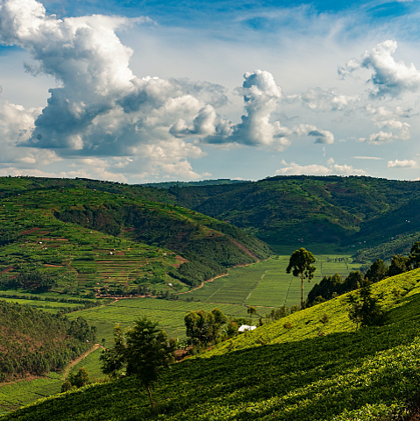Firepots-commitment-to-sustainability-Kigali-Rwanda