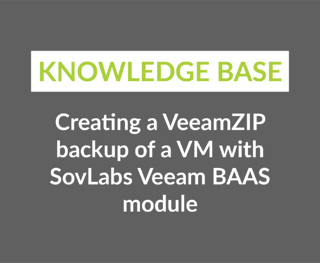 Creating a VeeamZIP backup of a VM with SovLabs Veeam BAAS module-1