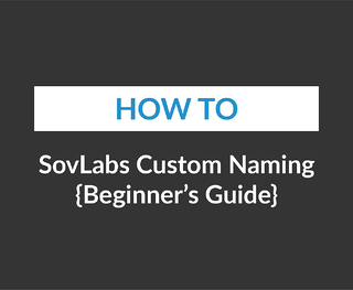 SovLabs Custom Naming {Beginners Guide}