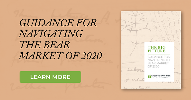 Navigating the Bear Market of 2020