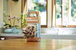Mushroom_grow_kit.jpg