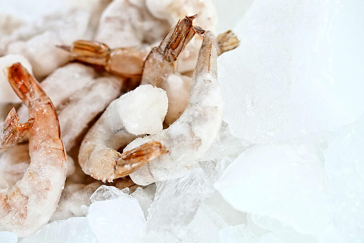 Bunch of frozen prawns on ice - seafood concepts