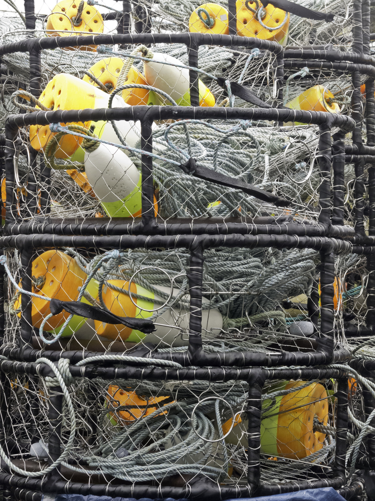 Stack of ring crab traps for commercial use, with rope lines and colored buoys, on a rainy day in Oregon