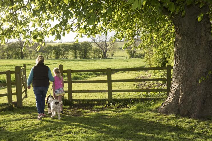 5 Beautiful Walks in Yorkshire for Your Glamping Holiday - Main Image