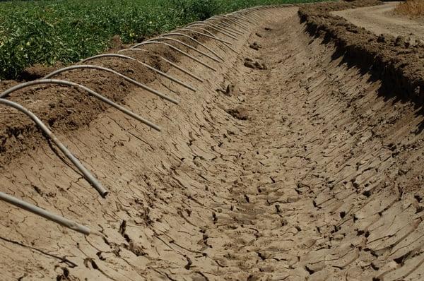 pjh_irrigation_0008