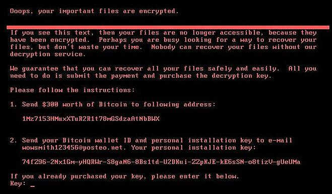 The ransom message displayed to victims of Petya ransomware