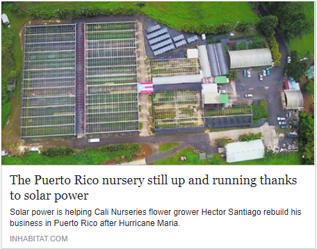 Puerto Rico nursery.png