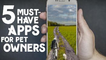 5-apps-FINAL