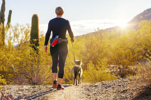 Valley Fever in Arizona-Central Pet