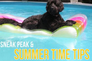 summer-tips-e1532562929867