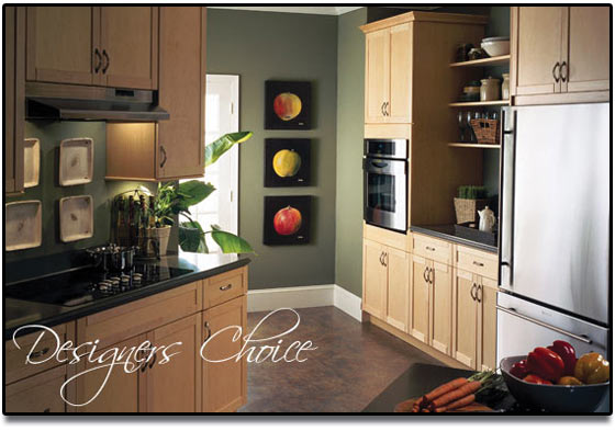 kitchen cabinets renovation design ideas designers choice
