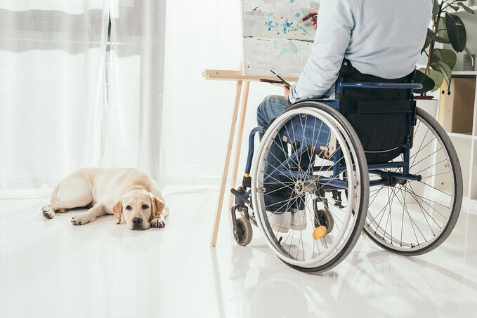A man in a wheelchair paints while a dog lays on the floor in front of him