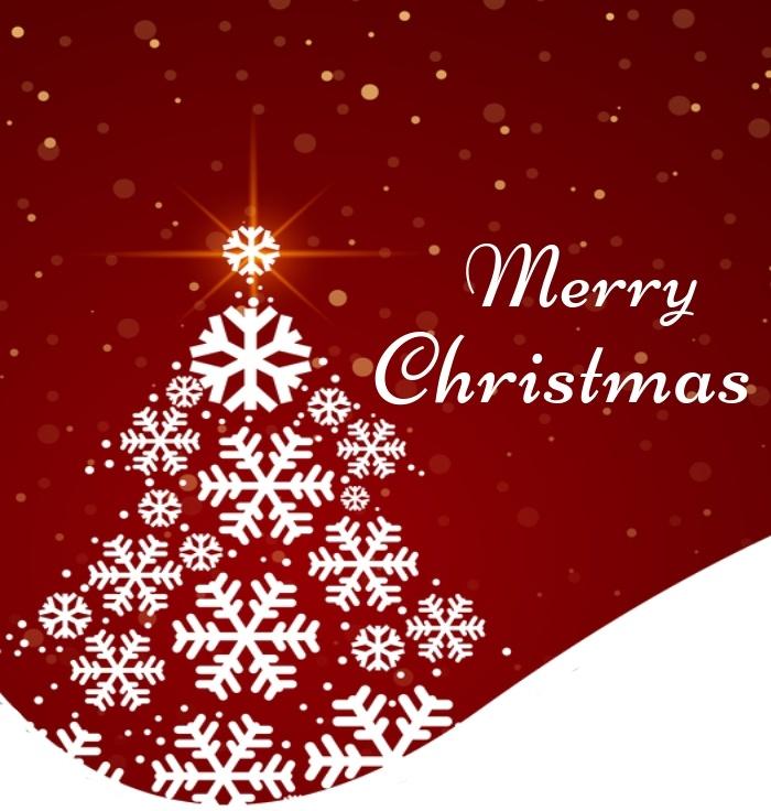 Merry (2) (1)