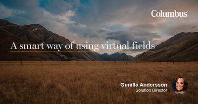 A smart way of using virtual fields