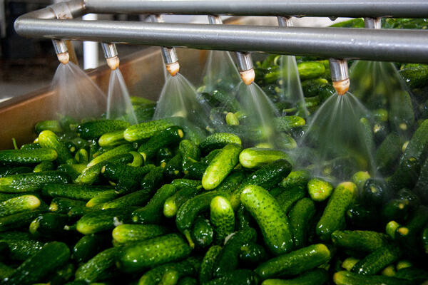 5 CIO concerns addressed: Ways food manufacturers can be customer-centric