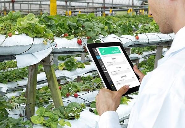 Gør udviklingen af fødevarer datadreven