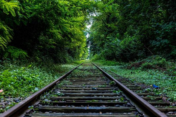Hold projektet på sporet – også ved uforudsete hændelser