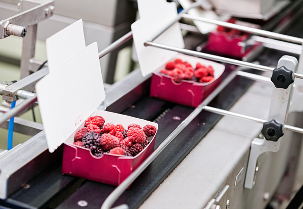ERP systems are essential in ensuring compliance with food safety standards